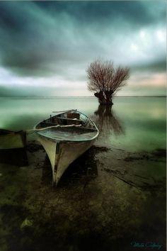 ♂ Silence nature