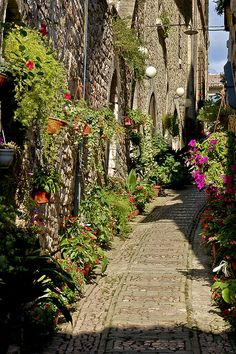 Streets of Spello, one of the most romantic towns in Umbria, Italy
