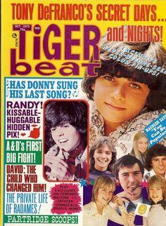 Teen Beat Magazine 1970s | 10/73 Tiger Beat - DAVID CASSIDY ANDY WILLIAMS RANDY MANTOOTH - ZTAMS