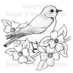 Bluebird Digital Stamp - Sweet 'n Sassy Stamps, LLC Pencil Art Drawings, Bird Drawings, Art Sketches, Drawing Birds, Drawing Flowers, Bird Embroidery, Embroidery Patterns, Machine Embroidery, Felt Patterns