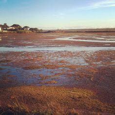 Lago do Quinta drained post flood Ria Formosa #quintadolago by quintadolago