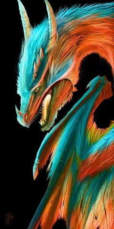 Dragon pictures Furry porn