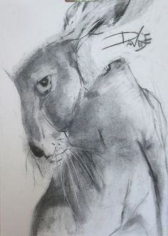 Valerie Davide hares originals for sale