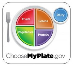 """USDA's Choose My Plate: Using a plate as a visual to make meal plans makes it easier for young children to see what their meal is missing.  """"Oh, I need to choose a fruit now."""" Laminate a plate and use markers to draw or write your meal plans on it each day."""