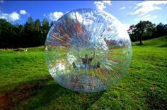 To go zorbing! A few of my friends have done it in New Zealand. I looked it up online and you can actually do it in the Smokey Mountains in Tennessee too!