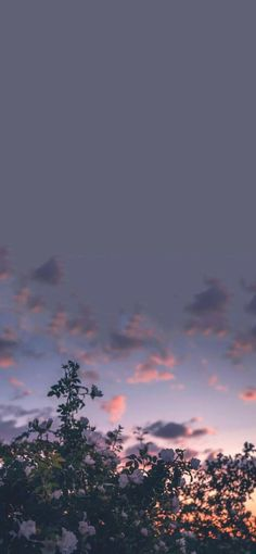 Night Sky Wallpaper, Mood Wallpaper, Iphone Wallpaper Tumblr Aesthetic, Iphone Background Wallpaper, Aesthetic Pastel Wallpaper, Scenery Wallpaper, Dark Wallpaper, Aesthetic Backgrounds, Nature Wallpaper