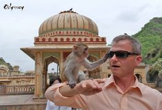 """Photo by Odyssey guest Todd in his India private tour. He wrote in the feedback that """"It wouldn't surprise me if there was a problem with a monkey"""", and """"It was however a very exciting and fun experience""""."""