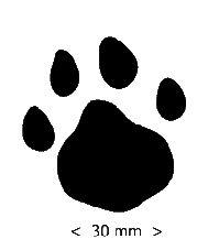 cat paw prints clip art