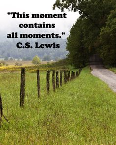 """This moment contains all moments.""  C.S. Lewis -- Image of GREAT SMOKY MOUNTAINS NATIONAL PARK by Dr. Joseph McGinn -- Travel tips and slideshow at http://www.examiner.com/article/inspirational-wonder-great-smoky-mountains-national-park?cid=rss"