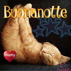 Immagini Belle da ImmaginiBuongiornoBelle.it