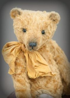Kaz Bears at Silly Bears - New and Vintage Collectable Teddy Bears, Aberdeen, Scotland