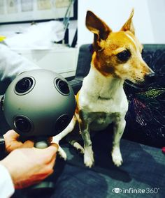 An awesome Virtual Reality pic! Our very own Jack is happy to welcome the OZO to the infinite360 family too! #puppylove #new #camera #filming #VR #360video #video #production #apps #nokia #ozo #nokiaozo #launch #gadget #technology #virtualreality #virtualreality #vrnews #future #cute #dog #dogsofinstagram #dogoftheday by infinite360vr check us out: http://bit.ly/1KyLetq
