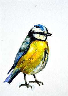 Yellow Bird Watercolour Painting from $34.99   www.wallartprints.com.au #WatercolourPainting