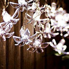 String Lights Sainsburys : For the Garden on Pinterest Succulents, Pitcher Plant and Decorative Concrete