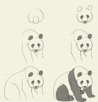 Résultats Google Recherche d'images correspondant à http://idrawgirls.com/tutorials/wp-content/uploads/2012/05/how-to-draw-panda-200x208.jpg