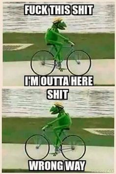 http://tipsycat.com/2015/10/kermit-the-frog-being-a-diva/