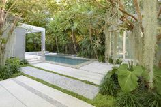 Raymond Jungles | Miami Beach Residential Garden | Color, lush / neat contrast, varying forms