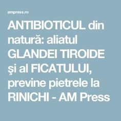 ANTIBIOTICUL din natură: aliatul GLANDEI TIROIDE şi al FICATULUI, previne pietrele la RINICHI - AM Press Thyroid, Smoothie, Healthy, Medicine, The Body, Smoothies, Shake