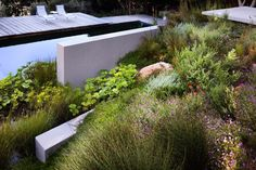 simplicity love: Bridle Road Residence, South Africa | Antonio Zaninovic Architecture Studio & Rees Roberts+Partners
