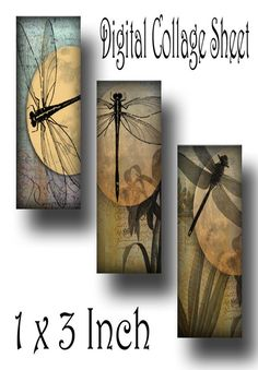 Dragonflies Microslide 1 x 3 Inch Instant Download Digital Image Collage Sheet (13-26) Barn Wood Crafts, Wood Burning Crafts, Pallet Crafts, Pallet Art, Dragonfly Wall Art, Image Collage, Download Digital, Organic Art, Porch Signs