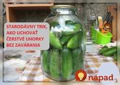 Starodávny trik, ako uchovať čerstvé uhorky na dlhú dobu: Bez nálevu a zavárania! Pickles, Cucumber, Food And Drink, Canning, Home Canning, Pickle, Pickling, Cauliflower, Zucchini