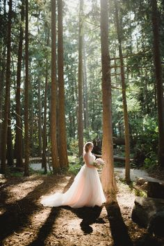 bride forest, forest bridal, erin wallis photography
