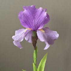 Crepe Paper Bearded Iris Single Stem Wedding by NectarHollow