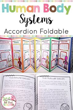 In this science activity, students read about the different human body systems and then create an in The Human Body, Human Body Lesson, Human Body Science, Human Body Activities, Human Body Unit, Human Body Systems, Science Activities For Kids, Science Classroom, Science Lessons