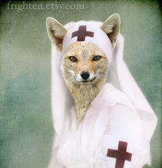 Teal Green and White Fox Art, Mixed Media Collage Print, Nurse Foxy, Altered Vintage Photo