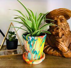 Want to add some VaVa Voom to your house plants!!!!! Big Plants, Unique Plants, Potted Plants, Cactus Plants, Web Instagram, Plant Pots, Planting Succulents, House Plants, Etsy Store