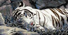 Blue eyes white tiger cross stitch