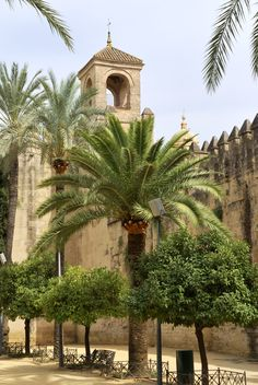 Alcázar, Cordoba, Andalucia, Southern Spain - Super pretty gardens and cool views if you climb to the top Malaga, Granada, Places To Travel, Places To See, Places Around The World, Around The Worlds, Wonderful Places, Beautiful Places, Andalucia Spain