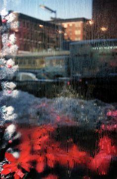 Saul Leiter - Artists - M+B