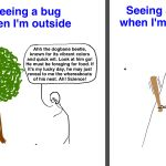 Why Bugs Ruin Everything- I actually read the whole thing and now I might have nightmares..