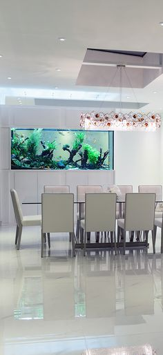 bildergebnis f r aquarium 3m interior pinterest. Black Bedroom Furniture Sets. Home Design Ideas