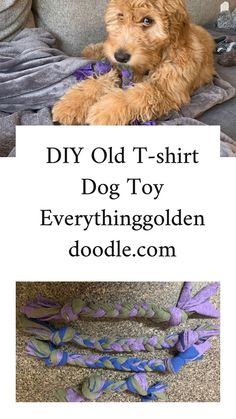 Use a few old t-shirts to create several new toy toys for your. Best Picture For Dog Toys bone For Diy Dog Toys, Best Dog Toys, Dog Lover Gifts, Dog Lovers, Dog Toy Storage, Dog Accesories, Pet Dogs, Pets, Doggies