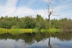 Samuel De Champlain Provincial Park Samuel De Champlain, Country Roads, River, Park, Outdoor, Outdoors, Rivers, Parks, The Great Outdoors