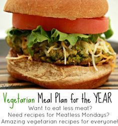 Vegetarian Meal Plan for the Year: January and February - A Reference Pin for when I run out of veggie ideas :D