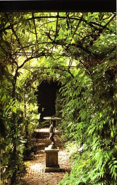 Love the brick path through the garden