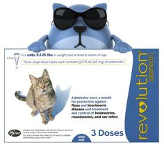 cheap Revolution For Cats no rx
