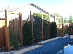 Trellis Screen by the pool Garden Arbor, Garden Oasis, Garden Trellis, Garden Gate, Privacy Trellis, Trellis Panels, Privacy Panels, Backyard Projects, Backyard Patio