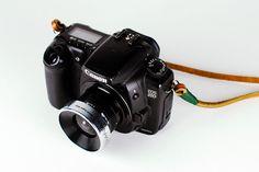 Dreamy Diana Lens kit