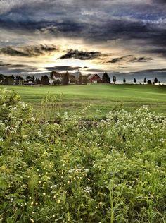 Twitterbilder | Morten P Røvik Vineyard, Clouds, Sky, Outdoor, Instagram, Heaven, Outdoors, Vine Yard, Heavens