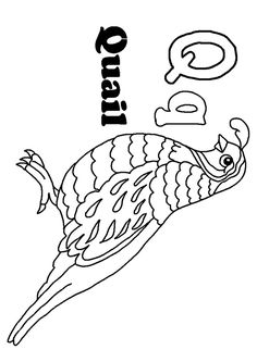 Top 10 Letter Q Coloring Pages Your Toddler Will Love To Learn Color