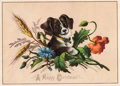 Free Vintage Clip Art – Cute Puppy