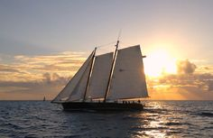Key West is always dependable to give a great sunset show! If you go, take a sunset cruise on the Jolly Rover, eat at Louie's Backyard (reservations required), see a show at LaTeDa, rent a kobe cat sail boat, go snorkeling (or diving if you have a license), play checkers or dominoes with the locals at one of the south side beaches, play bocci ball, visit the AIDS memorial and bring or rent a bicycle. Discover the magic of the real Key West.