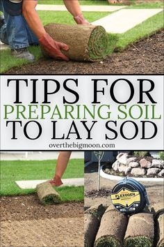 Gardening + Outdoor Decor : Tips and Tricks for preparing your soil before laying new sod! Making sure the soil is correct, will make or break the success of your lawn! Lawn Sod, Sod Grass, Garden Show, Garden Care, How To Lay Sod, How To Grow Grass, Growing Grass, Sod Installation, Planting Grass