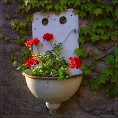 These vintage cast iron enameled sinks make the perfect shabby chic planter. With drainage holes already part of the sink design, and fixing holes in the enamel back plate, they're ready-made to plant up and hang on a sunny wall in the garden.