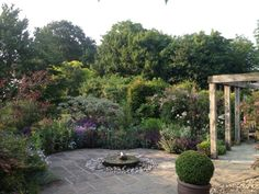 Plenty to see on the patio. NGS Gardens open for charity - Garden