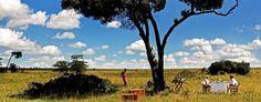 Kenya, Masai Mara, luxury moments #whyilovekenya #imprevedibilekenya #magicalkenya